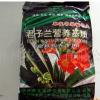 神农君子兰专用营养基质