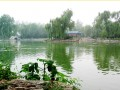 禹王农业 (5)
