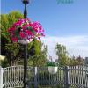 花盆-壁挂栏杆灯柱使用