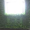 双孔花盆-懒人屋顶绿化专用