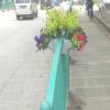 花盆-单孔墙体懒人专用