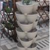 阳台种菜|立体种植|阳台花树|更美更省空间