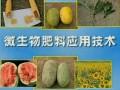 微生物肥料的应用与技术 (416播放)
