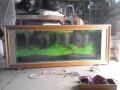 精美鱼缸 (3)