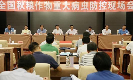 农业部:召开秋粮作物重大病虫防控现场会
