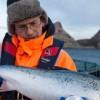 鲜活三文鱼挪威鮭品厂家诚招各地经销商