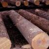 供应俄罗斯樟子松,落叶松,水曲柳,红松,旧枕木