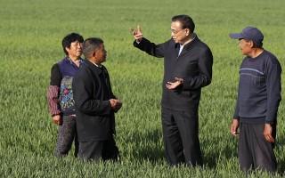 """总理部署这项惠及亿万农民的工程,提前半年""""交卷""""了!"""