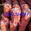 陕西红萝卜批发,红萝卜价格,红萝卜产地