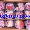 3月陕西冷库纸袋红富士苹果产地批发出库价格
